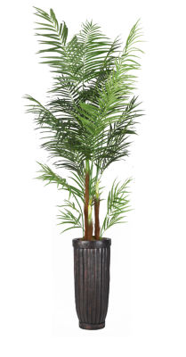 97 Inch Tall Areca Palm Tree In Planter