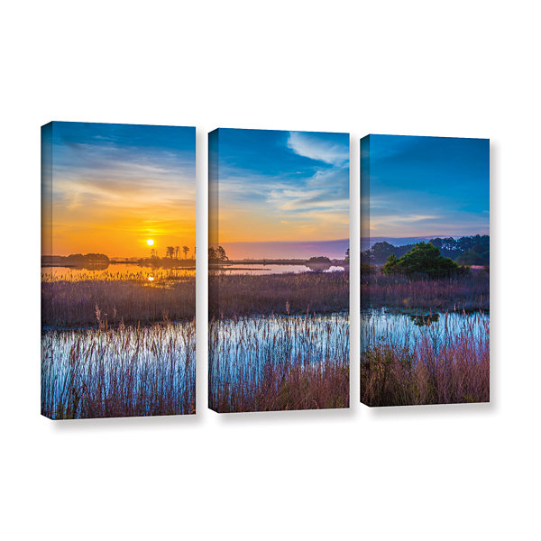 Brushstone Salt Marsh Sunrise 3-pc. Gallery Wrapped Canvas Wall Art