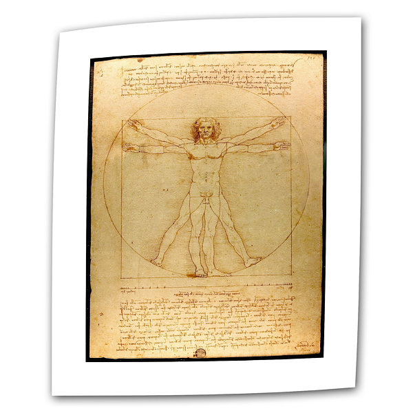 Brushstone Vitruvian Man Canvas Wall Art