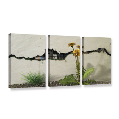 Brushstone Between the Cracks 3-pc. Gallery Wrapped Canvas Wall Art