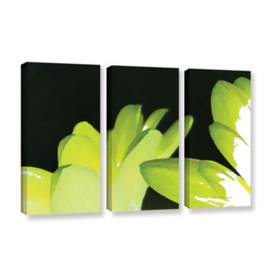 Brushstone Gerber Time I 3-pc. Gallery Wrapped Canvas Wall Art