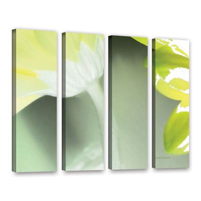 Brushstone Gerber Time II 3-pc. Gallery Wrapped Canvas Wall Art