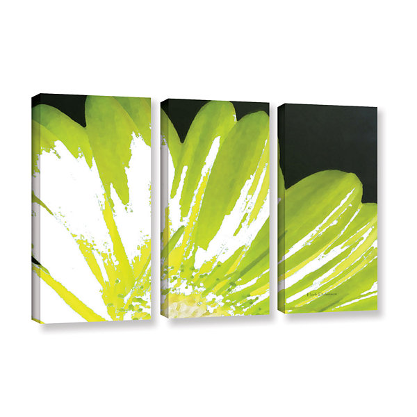 Brushstone Gerber Time III 3-pc. Gallery Wrapped Canvas Wall Art