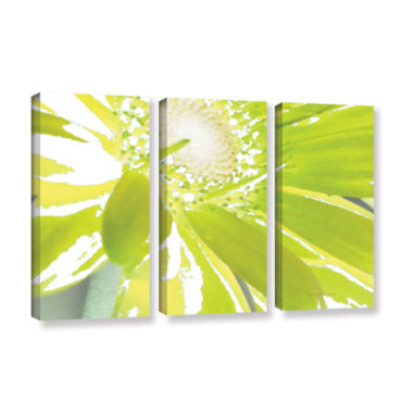 Brushstone Gerber Time IV 3-pc. Gallery Wrapped Canvas Wall Art