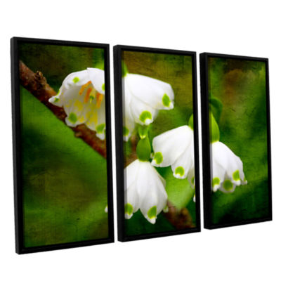 Brushstone Spring Reunion 3-pc. Floater Framed Canvas Wall Art