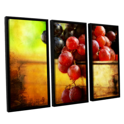 Brushstone Autumn Grapes 3-pc. Floater Framed Canvas Wall Art