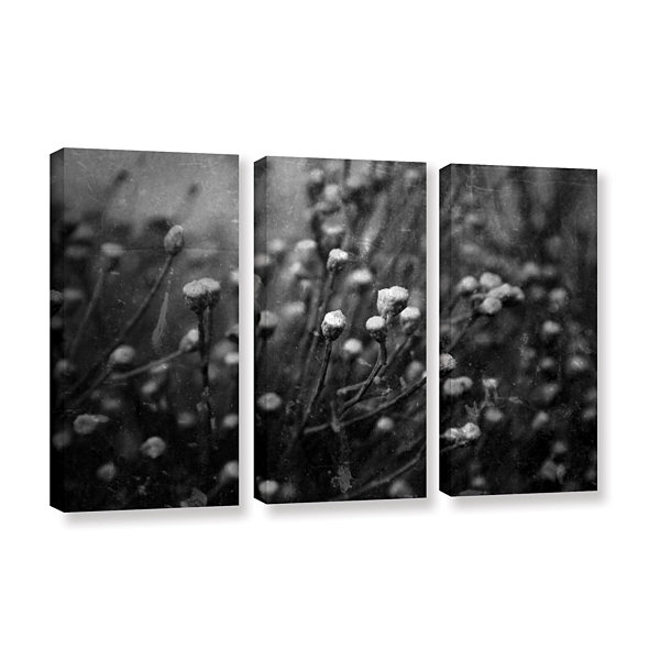 Brushstone Anticipation Of 3-pc. Gallery Wrapped Canvas Wall Art