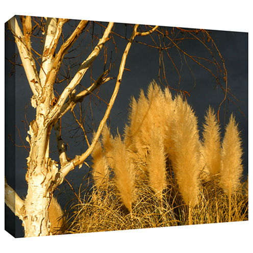 Brushstone Autumn storm light Gallery Wrapped Canvas Wall Art