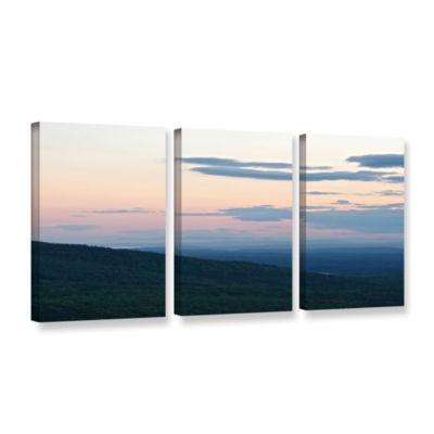 Brushstone Aracia Sunset III 3-pc. Gallery WrappedCanvas Wall Art