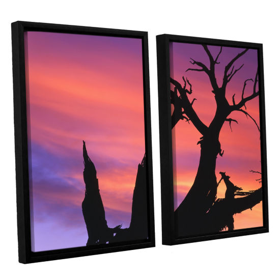 Brushstone Desert Magic Hour 2-pc. Floater FramedCanvas Wall Art