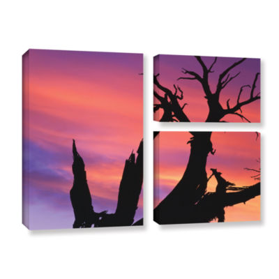 Brushstone Desert Magic Hour 3-pc. Flag Gallery Wrapped Canvas Wall Art