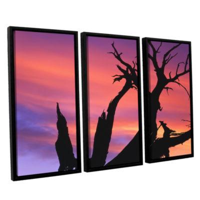 Brushstone Desert Magic Hour 3-pc. Floater Framed Canvas Wall Art