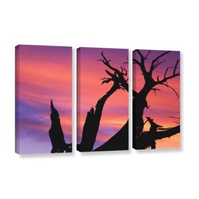 Brushstone Desert Magic Hour 3-pc. Gallery WrappedCanvas Wall Art