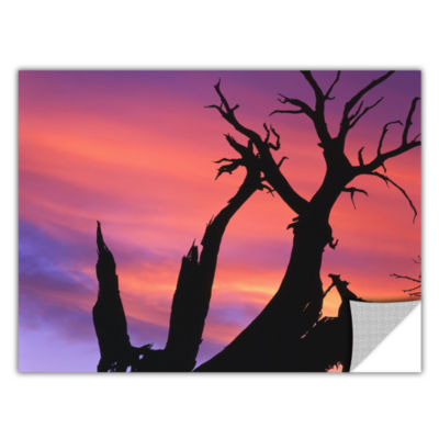 Brushstone Desert Magic Hour Removable Wall Decal