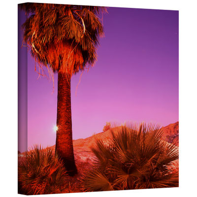 Brushstone Desert Moon Gallery Wrapped Canvas WallArt