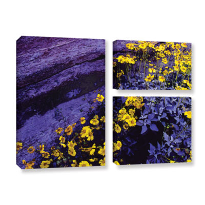 Brushstone Desert Sunflower Dusk 3-pc. Flag Gallery Wrapped Canvas Wall Art