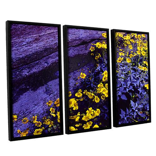 Brushstone Desert Sunflower Dusk 3-pc. Floater Framed Canvas Wall Art