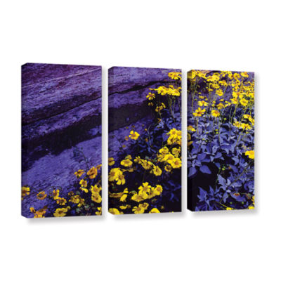 Brushstone Desert Sunflower Dusk 3-pc. Gallery Wrapped Canvas Wall Art