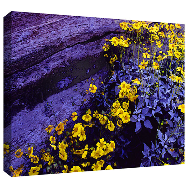 Brushstone Desert Sunflower Dusk Gallery Wrapped Canvas Wall Art