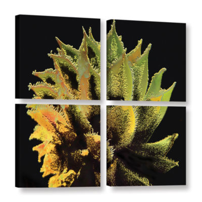 Brushstone Desert Vision 4-pc. Square Gallery Wrapped Canvas Wall Art
