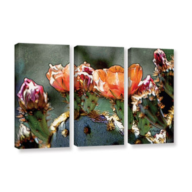 Brushstone Dessert Bloom 3-pc. Gallery Wrapped Canvas Wall Art