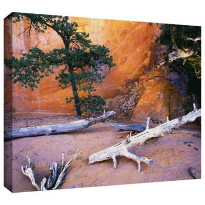 Brushstone Devils Garden Gallery Wrapped Canvas Wall Art