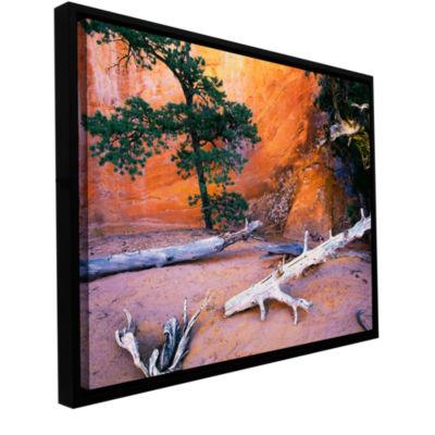 Brushstone Devils Garden Gallery Wrapped Floater-Framed Canvas Wall Art