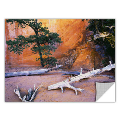 Brushstone Devils Garden Removable Wall Decal
