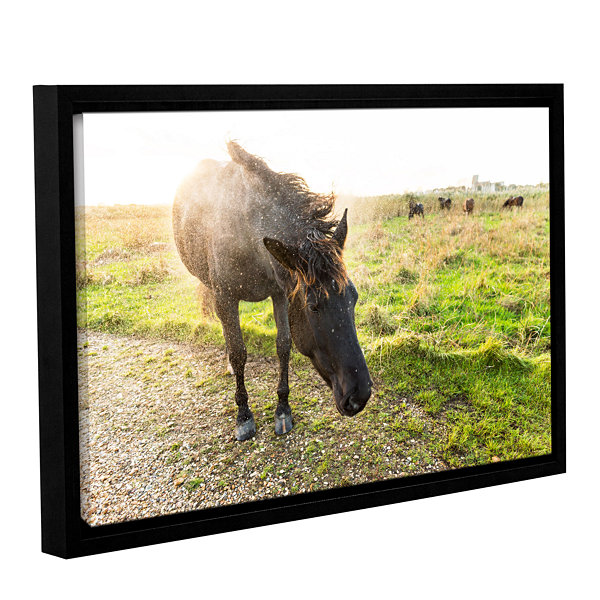 Brushstone Dirty Horse Gallery Wrapped Floater-Framed Canvas Wall Art