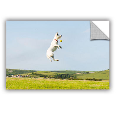 Brushstone Dog Fetches Removable Wall Decal
