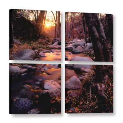 Brushstone Domeland Wilderness 4-pc. Square Gallery Wrapped Canvas Wall Art