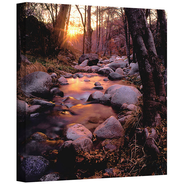 Brushstone Domeland Wilderness Gallery Wrapped Canvas Wall Art