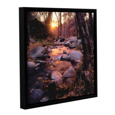 Brushstone Domeland Wilderness Gallery Wrapped Floater-Framed Canvas Wall Art