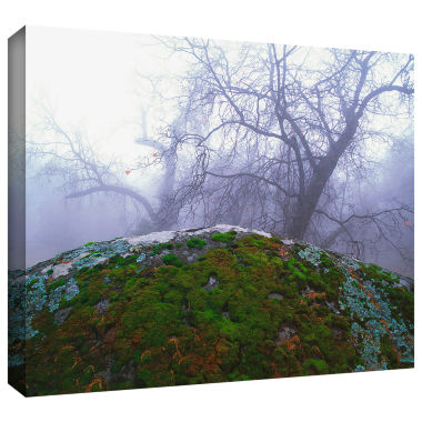 Brushstone Domeland Winter Gallery Wrapped CanvasWall Art