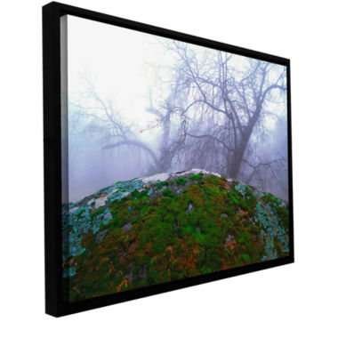 Brushstone Domeland Winter Gallery Wrapped Floater-Framed Canvas Wall Art