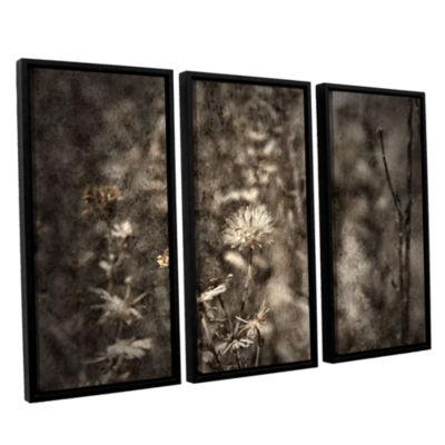 Brushstone Dormant 3-pc. Floater Framed Canvas Wall Art