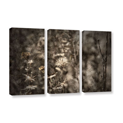 Brushstone Dormant 3-pc. Gallery Wrapped Canvas Wall Art
