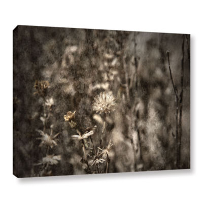 Brushstone Dormant Gallery Wrapped Canvas Wall Art