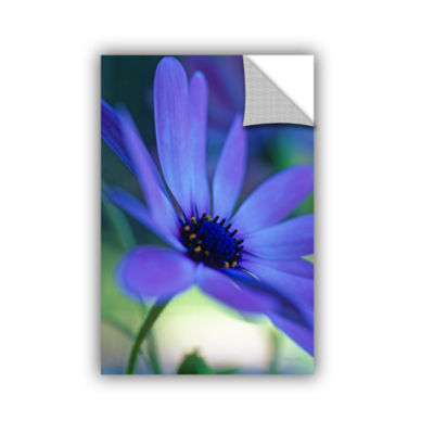 Brushstone Dream Daisy Removable Wall Decal