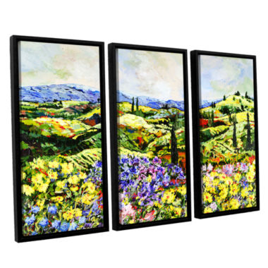 Brushstone Dream Valley 3-pc. Floater Framed Canvas Wall Art