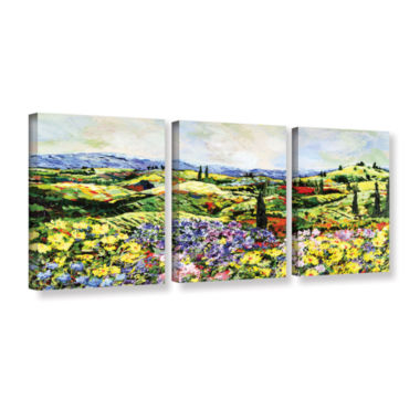 Brushstone Dream Valley 3-pc. Gallery Wrapped Canvas Wall Art