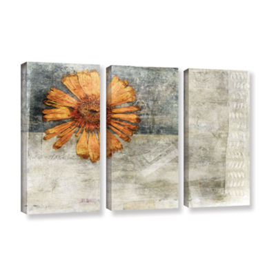 Brushstone Dried Flower Abstract 3-pc. Gallery Wrapped Canvas Wall Art