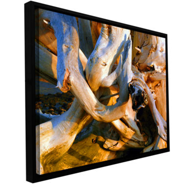Brushstone Drift Log Detail Gallery Wrapped Floater-Framed Canvas Wall Art