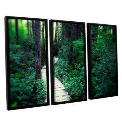 Brushstone Earth Path 3-pc. Floater Framed CanvasWall Art
