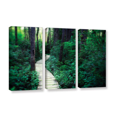 Brushstone Earth Path 3-pc. Gallery Wrapped CanvasWall Art