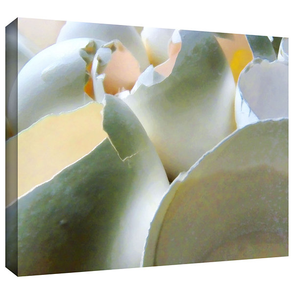 Brushstone Brushstone Egg Shells Gallery Wrapped Canvas Wall Art