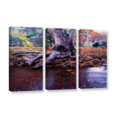 Brushstone Aravaipa Canyon Creek 3-pc. Gallery Wrapped Canvas Wall Art