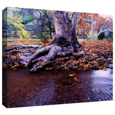 Brushstone Aravaipa Canyon Creek Gallery Wrapped Canvas Wall Art
