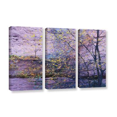 Brushstone Aravaipa Canyon Dusk 3-pc. Gallery Wrapped Canvas Wall Art