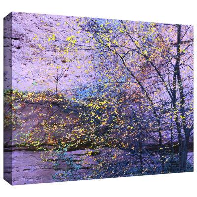 Brushstone Aravaipa Canyon Dusk Gallery Wrapped Canvas Wall Art